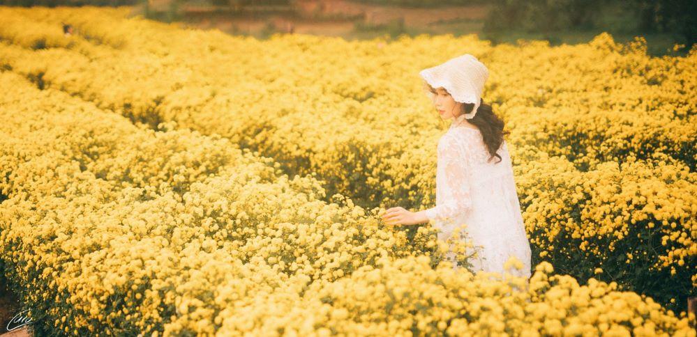 Vân Anh chụp bộ ảnh lạc vào rừng hoa đầy mộng mơ